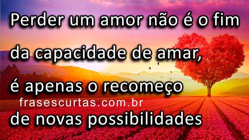Perder um amor não é o fim da capacidade de amar, é apenas o recomeço de novas possibilidades