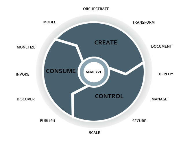 What is API Lifecycle Management ?