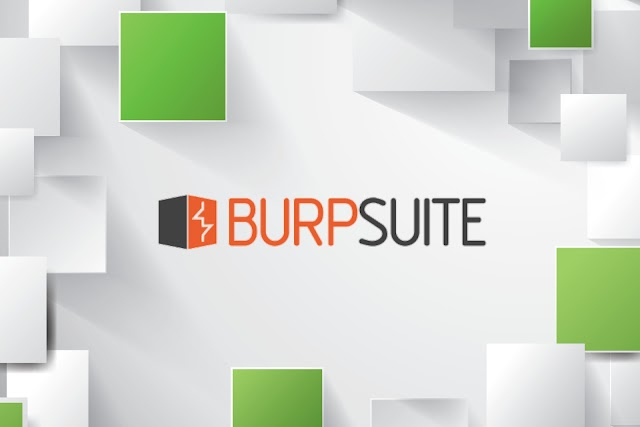 Most Useful Plugins for Burp-Suite