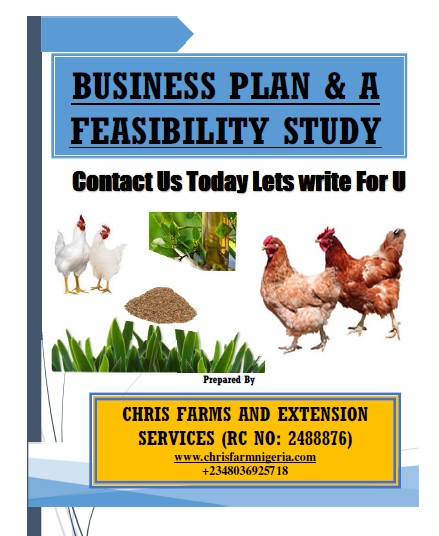 Professional Poultry Business Plans and Feasibility Study