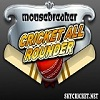 Play cricket allrounder game