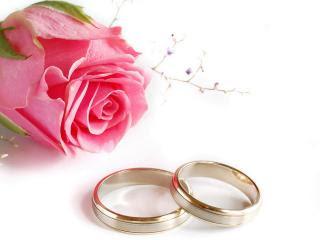Ruže i vjenčani prsteni download besplatne pozadine slike za mobitele