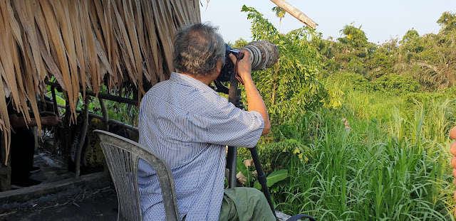 Nghệ sỹ nhiếp ảnh đang chụp chim từ sân thượng