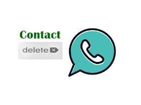 Cara Menghapus Kontak WhatsApp dengan 4 Langkah Klik