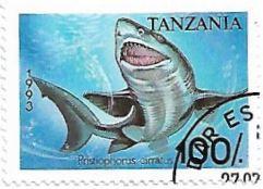 Selo Tubarão