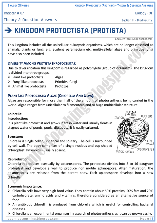 kingdom-protista-protoctista-descriptive-question-answers-biology-11th
