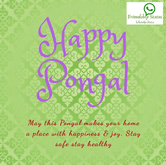 Best 25+ Beautiful Happy Pongal Wishes |Happy Makar Sankranti Wishes Images