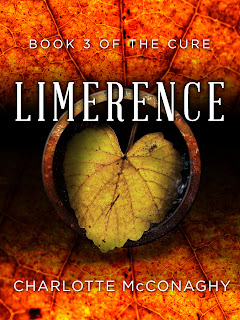 https://www.goodreads.com/book/show/26038810-limerence