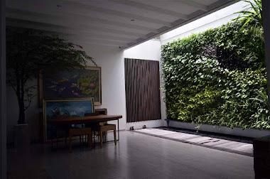 4 Ide Area Rumah Menggunakan Greenwall