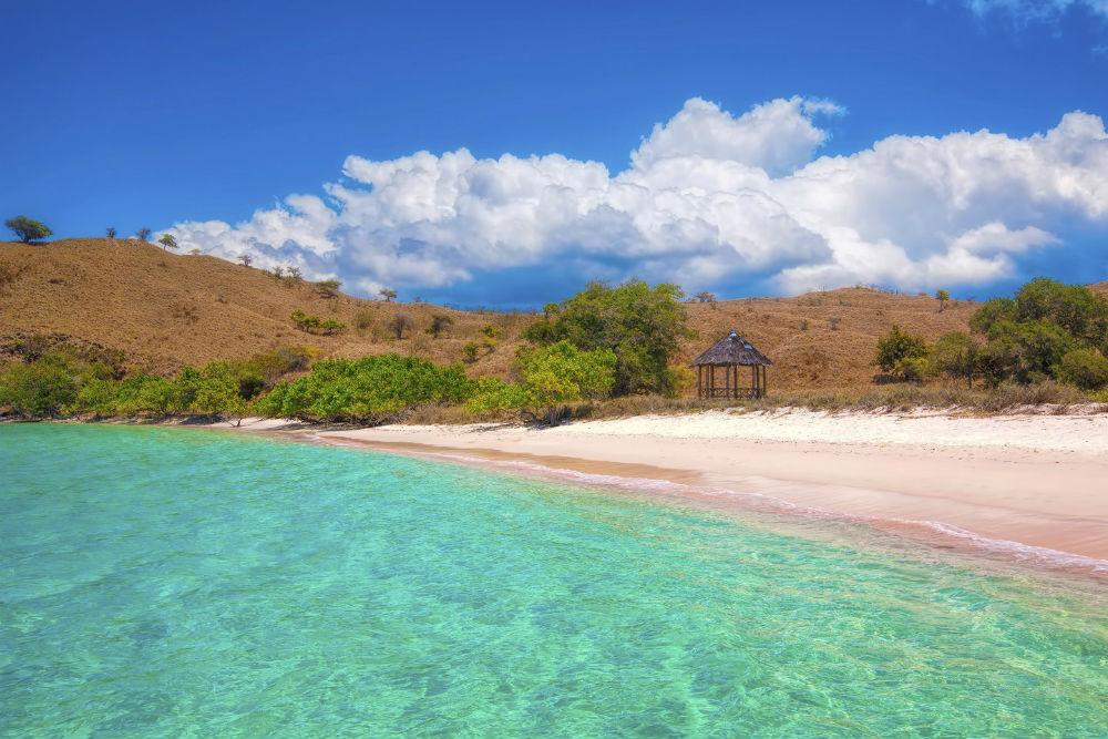 Pink Sands Beaches