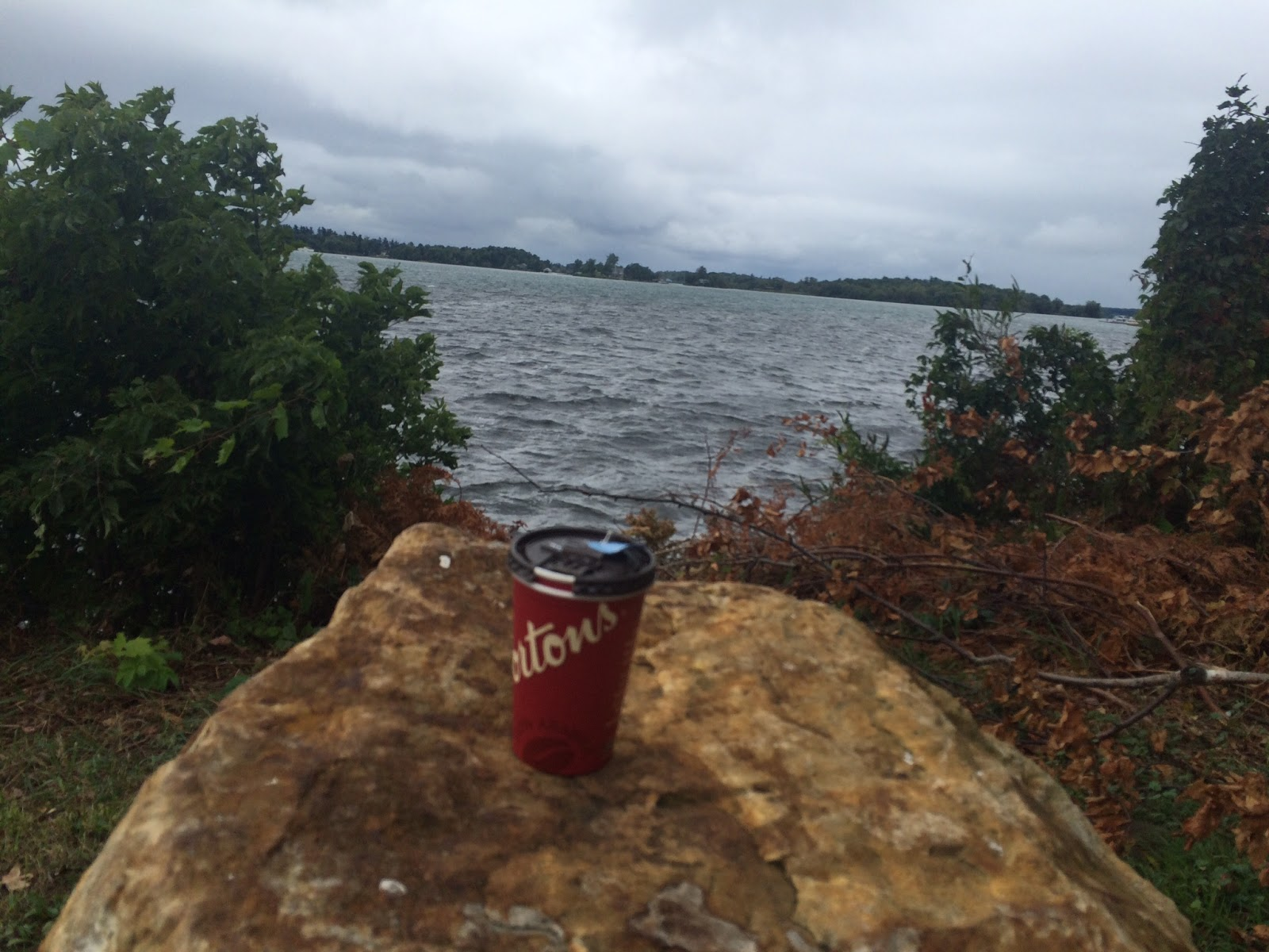 Tim Hortons coffee on the road - view on a lake