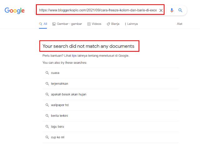 Pentingnya Melakukan Pengecekan Apakah Artikel Sudah Diindex oleh Google atau Belum