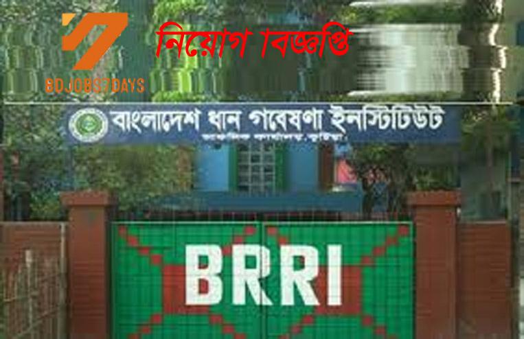 Bangladesh Rice Research Institute Job Circular-2020