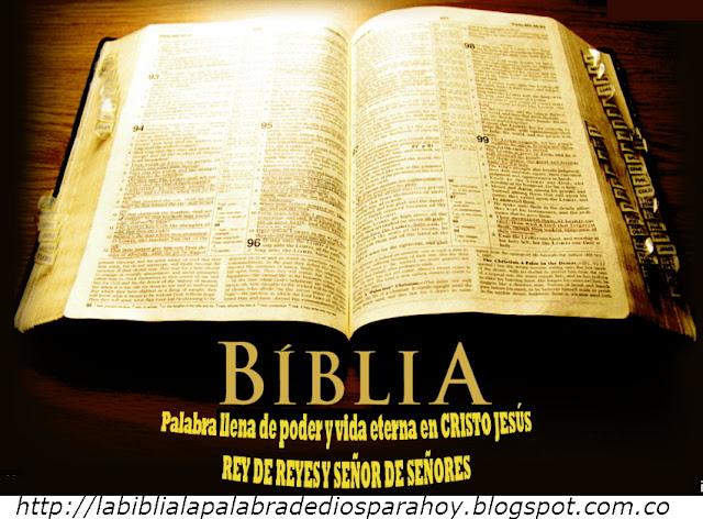 Liturgia diaria de la palabra de Dios-Ayudame señor Jesus