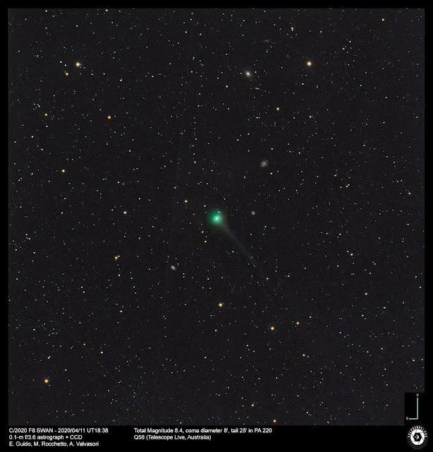 Cometa C/2020 F8