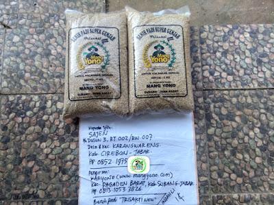 Benih padi yang dibeli   SAJEN Cirebon, Jabar.    (Sebelum di Packing).