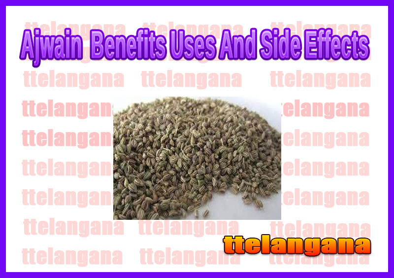 Ajwain (Carom Seeds) Benefits Uses And Side Effects