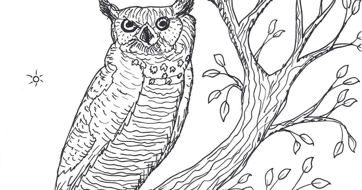 Robin's Great Coloring Pages: Great Horned Owl