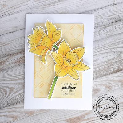 Rachel Vass Designs - Spring Daffodils