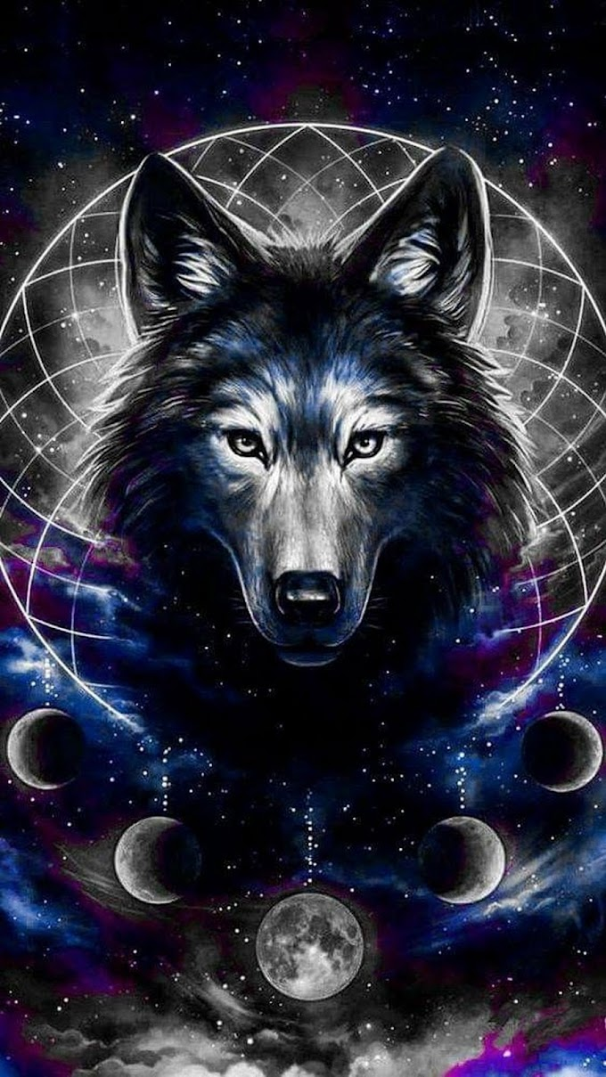 Papel de Parede para Celular Lobo Místico
