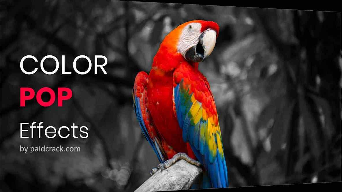 Color Pop Effects - Photo Editor Pro Mod Apk 3.3