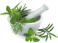 Obat Sipilis Herbal Instan
