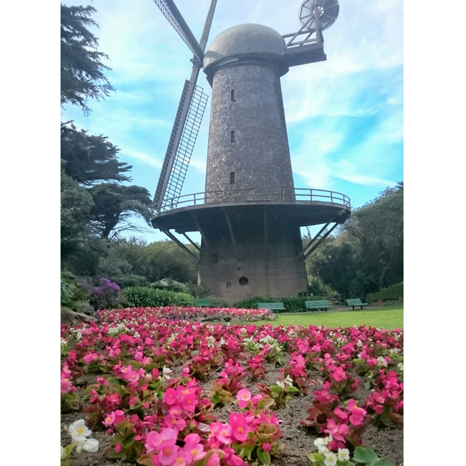 Dutch Windmill Golden Gate Park