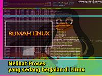Melihat Proses yang sedang berjalan di Linux