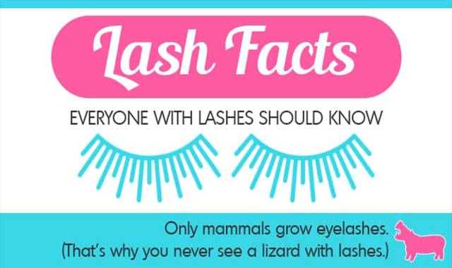 Eyelash Facts Everyone with Lashes Should Know