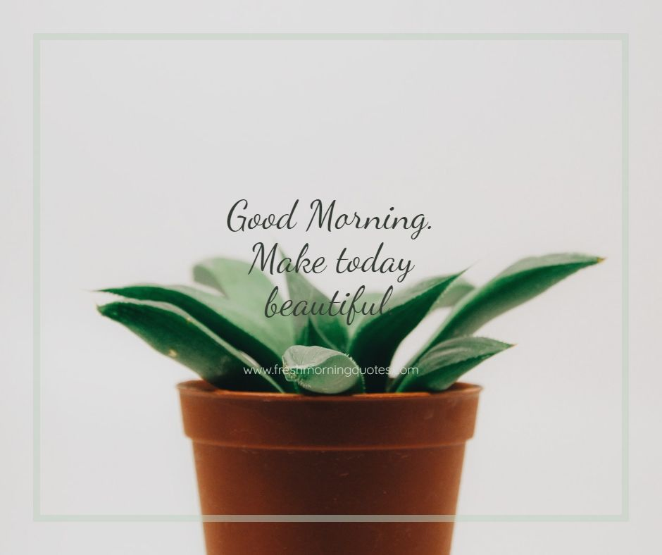 make today beautiful hd images