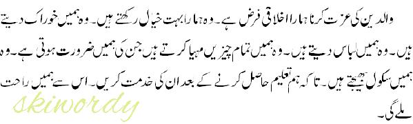 Paragraph no  8 (From English Grammar Class 10th Punjab) Translate