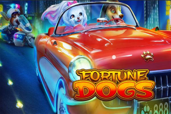 Main Gratis Slot Demo Fortune Dogs Habanero