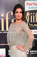 Sonal Chauhan in a stonework Floor Length Silver Designer Gown at IIFA Utsavam Awards March 2017 010.JPG