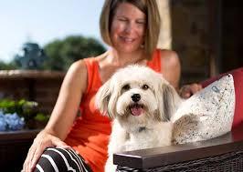 cães com insuficiência renal