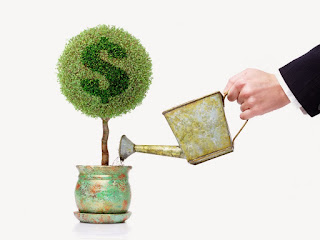Picture of a potted plant with a dollar symbol on it being watered by a hand holding a watering can