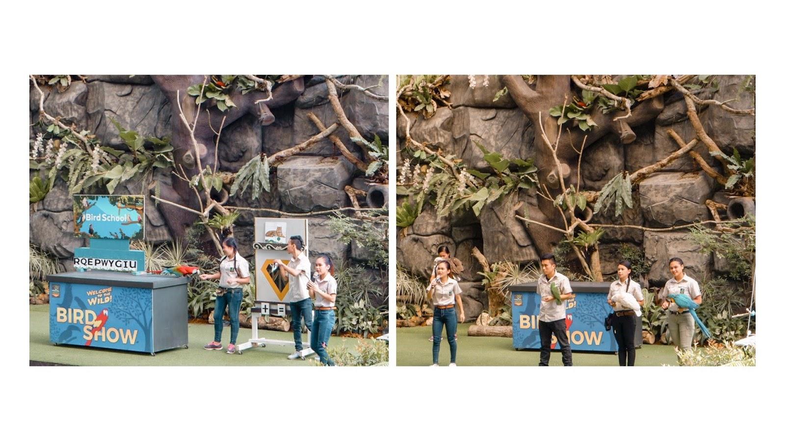 Cebu Safari and Adventure Park + Zayn's First Zoo Experience