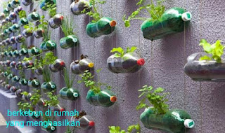 Hidroponik botol bekas