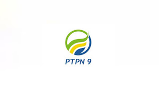 Lowongan Kerja Magang PT Perkebunan Nusantara IX (Persero) Agustus 2019