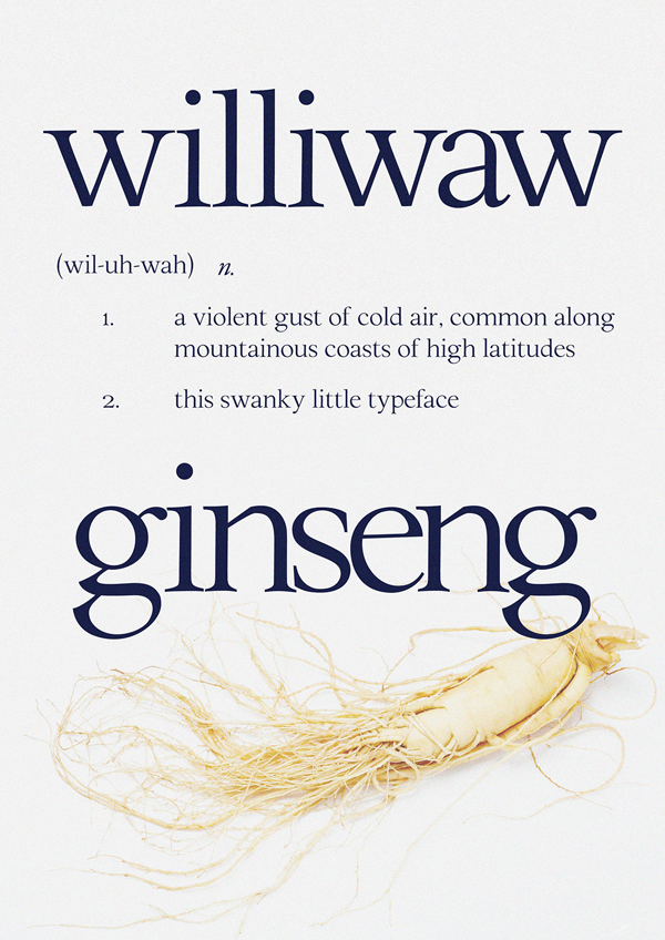 Download Font Terbaru 2018 - Williwaw Book Free Font