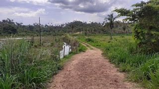 Pedreiras: Trio que trocou tiros com a PM cometeu assalto no povoado Pacas.