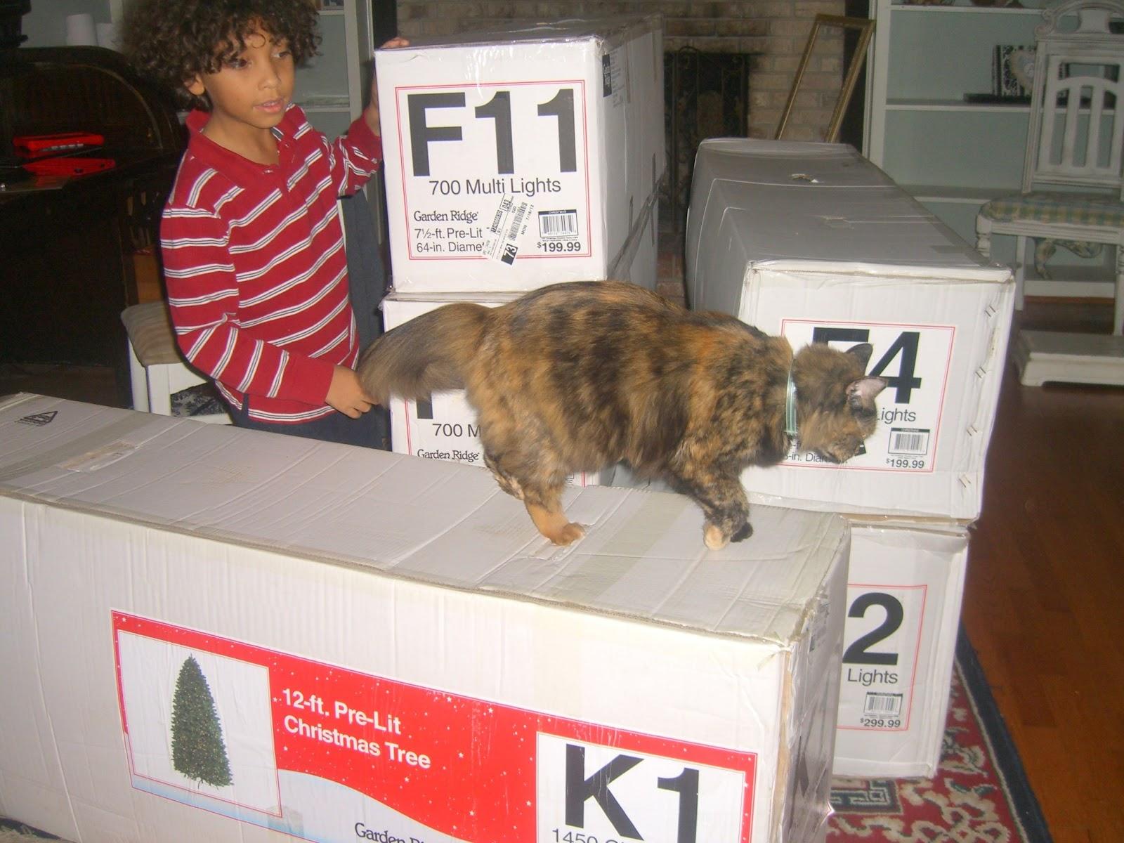 The Working Home Keeper: Garden Ridge 90% Off Christmas!