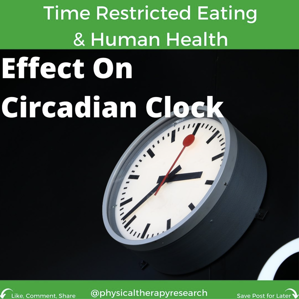 Time Restricted Eating on Human Health Part 5 - Effects on Circadian Clock - themanualtherapist.com