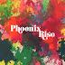 Sunny Jain - Phoenix Rise Music Album Reviews