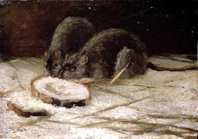 One thing for creationists to like about rodents is that they confound evolutionists on several areas.