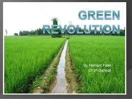 green revolution in india