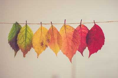 Autumn leaves hanging on a line