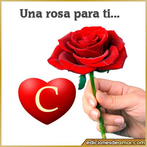 una rosa para ti C