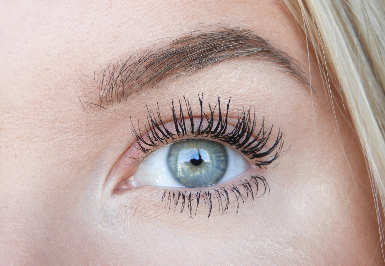 Catrice Eyeconista Mascara Review Waterproof Irispraatnl