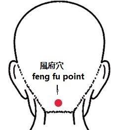 Teknik Feng Fu