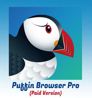 Puffin Browser Pro Apk Mod